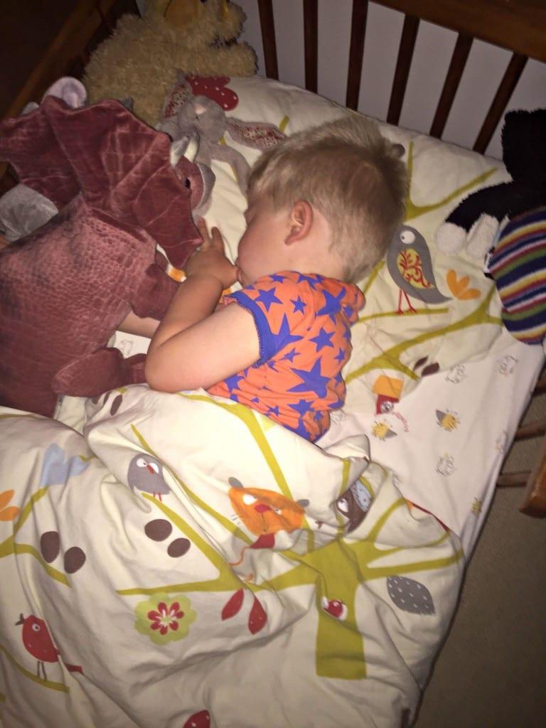 Logan sleeping