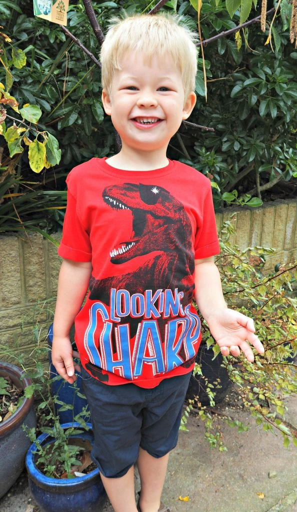 Logan-George-dinosaur-top