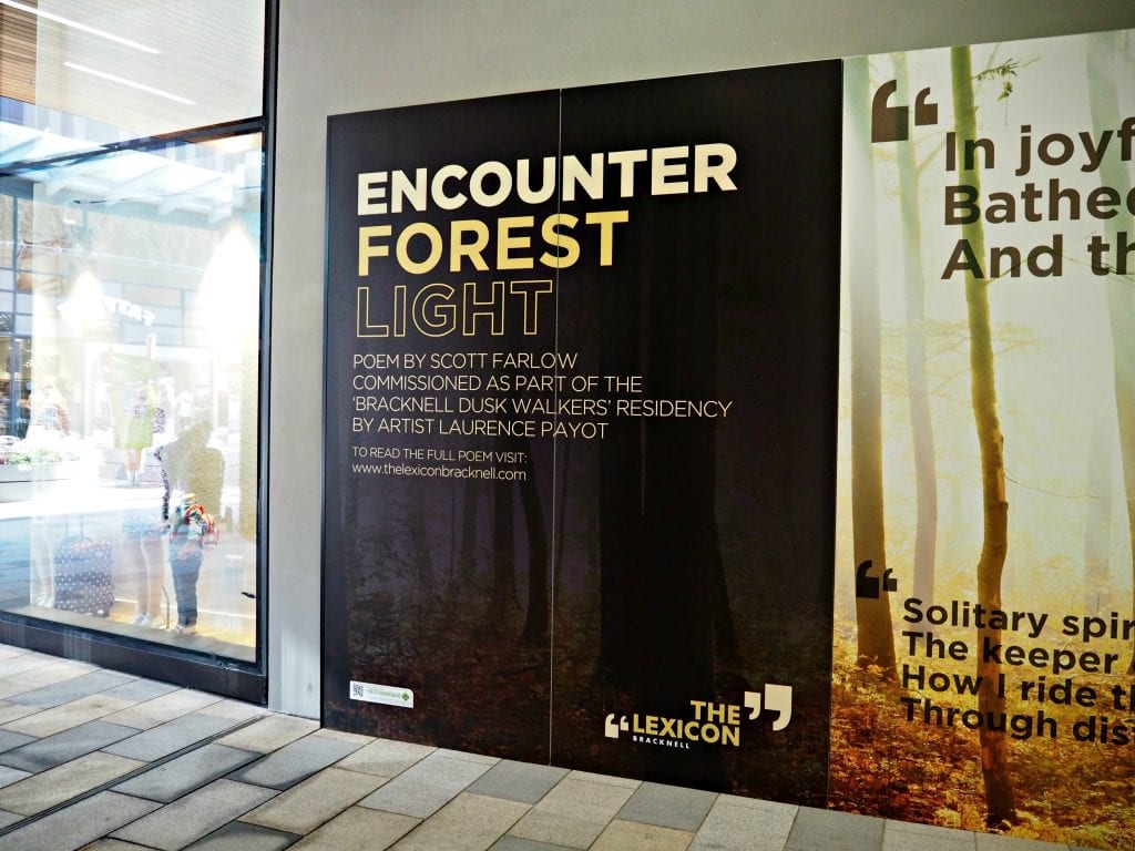 The Opening of the Lexicon in Bracknell - sounds of the forest