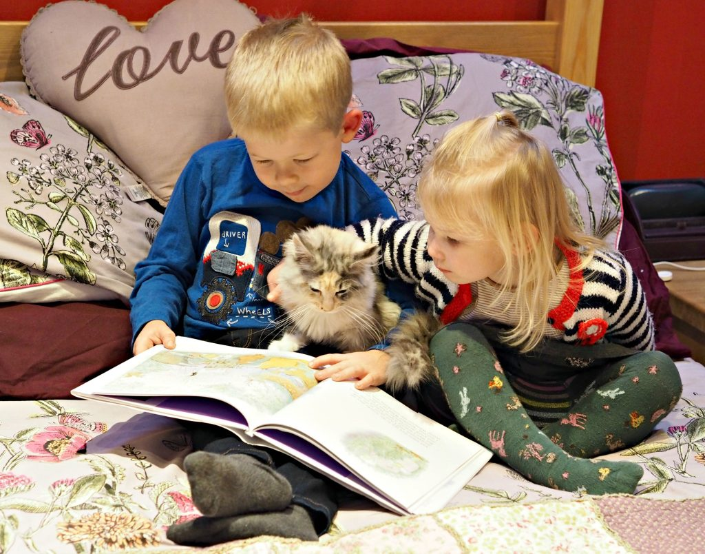 CHILDREN'S BOOK REVIEW Katinka's Tail by Judith Kerr - Logan, Aria and Sparkle