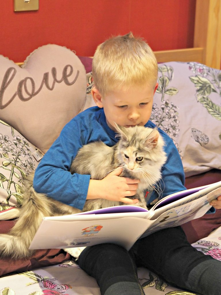 CHILDREN'S BOOK REVIEW Katinka's Tail by Judith Kerr - Logan reading with Sparkle