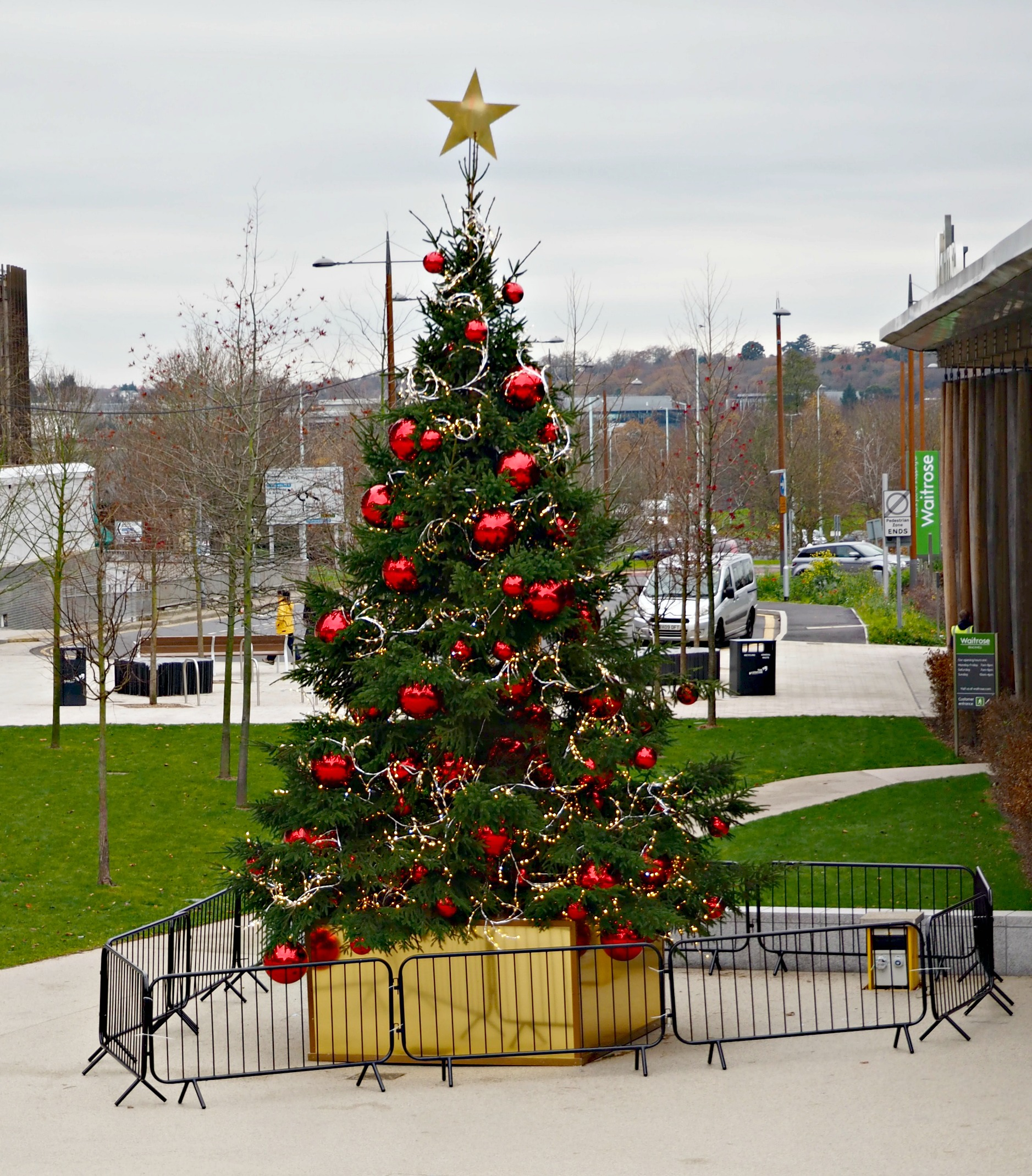 What's on at the Lexicon this Christmas in Bracknell - the Lexicon Christmas tree