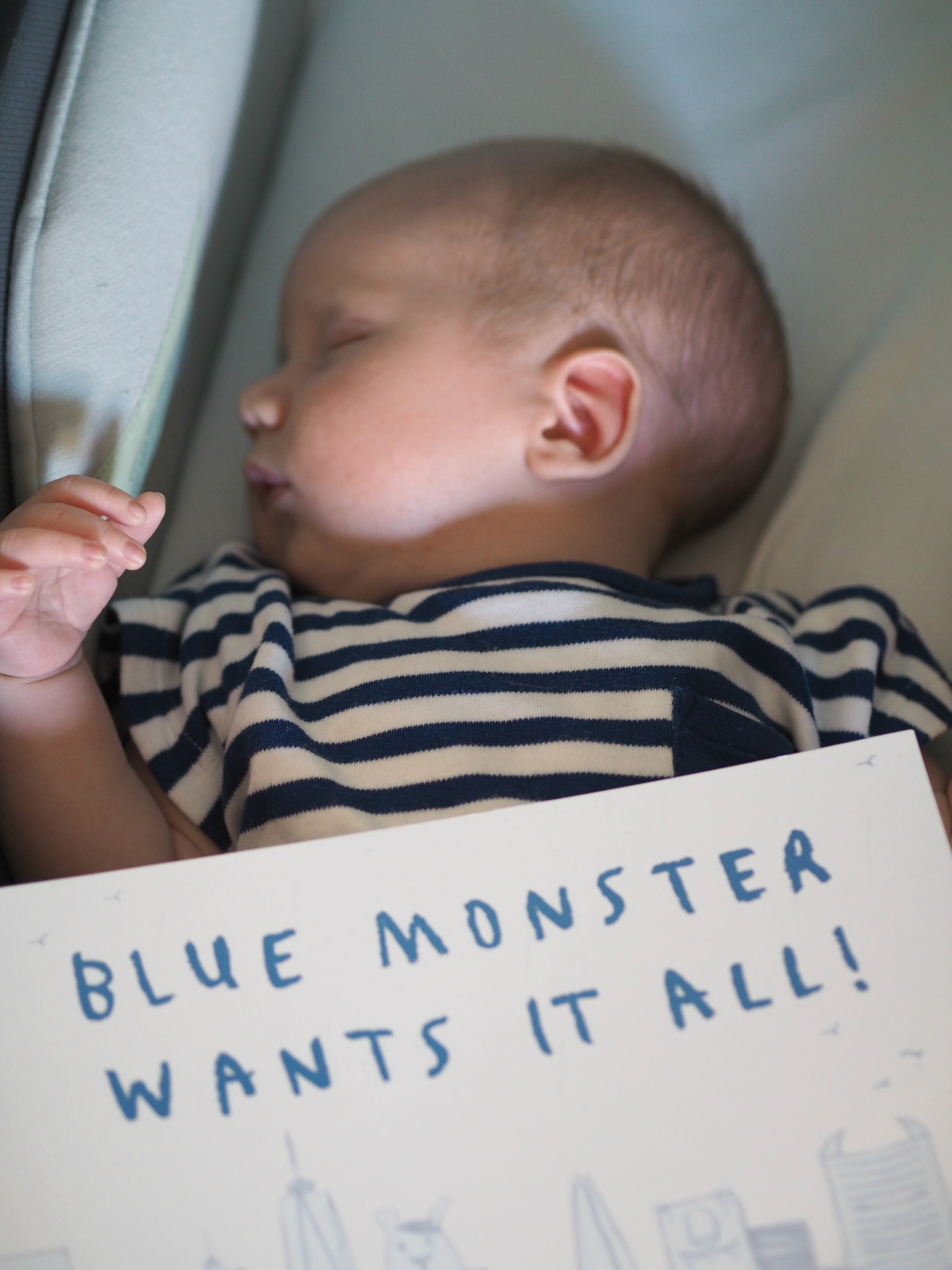 CHILDREN'S BOOK REVIEW Blue Monster Wants It All - Bodhi with the book