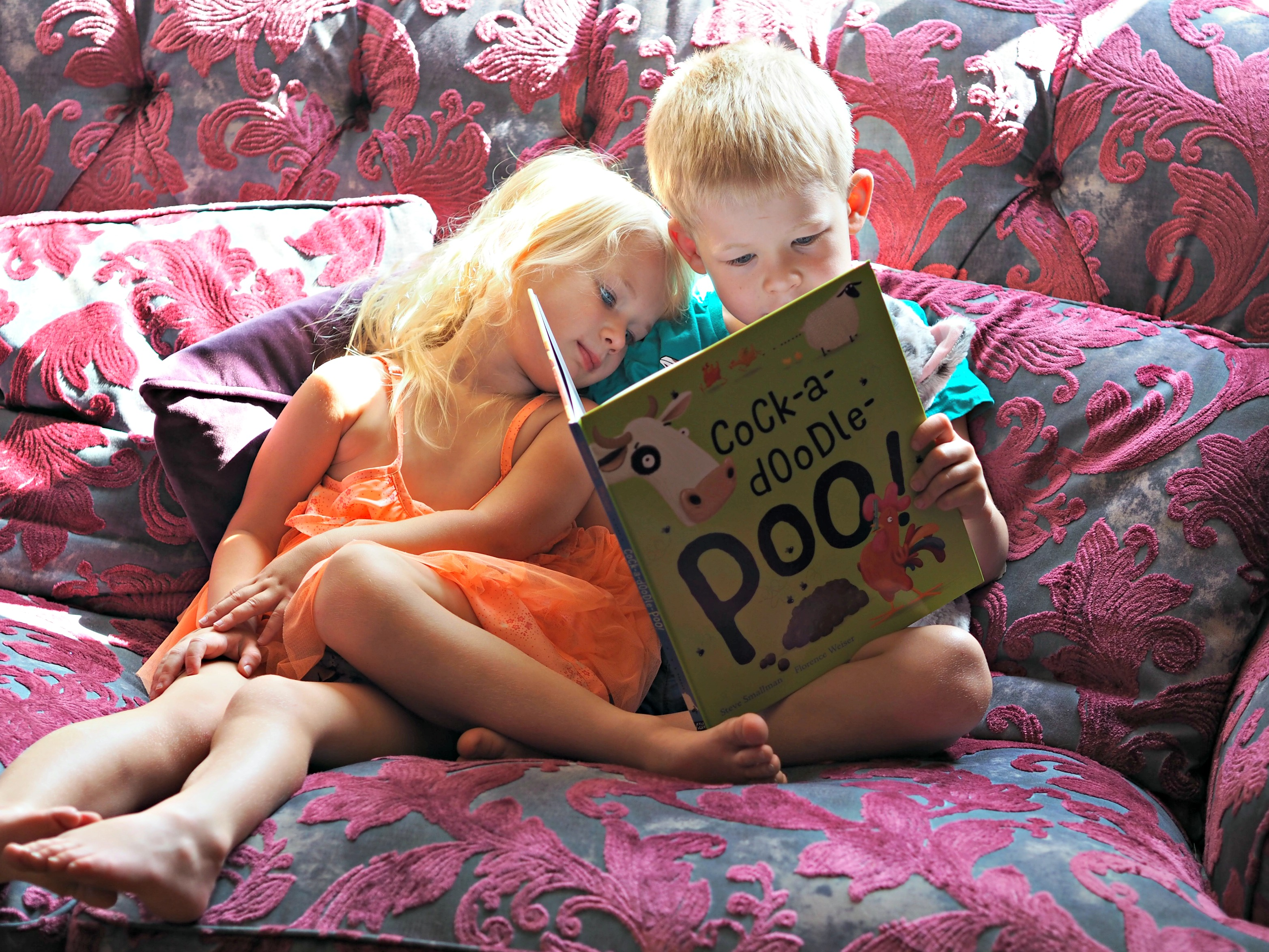 CHILDREN'S BOOK REVIEW Cock-a-Doodle-Poo by Steve Smallman - reading together