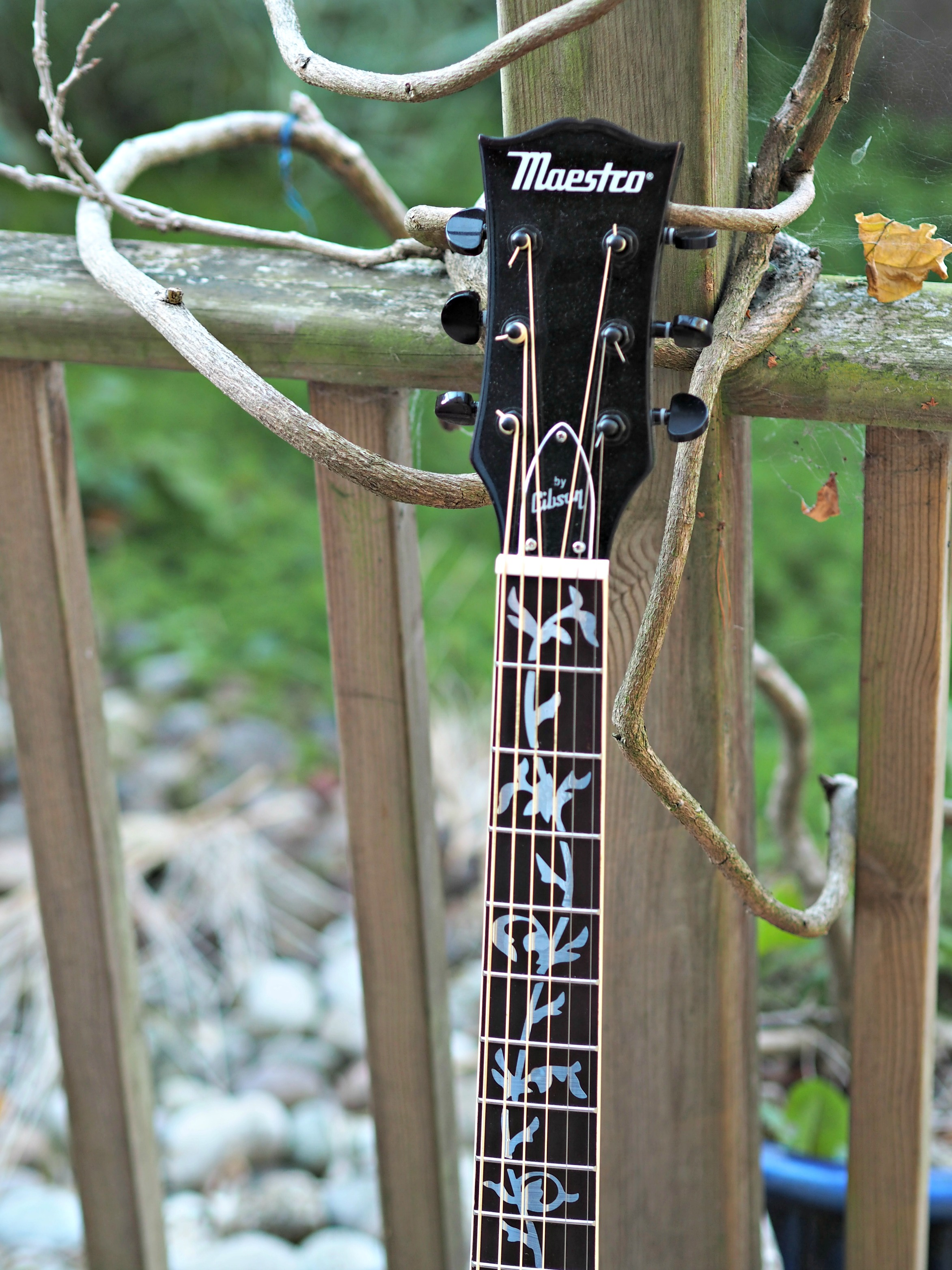 BEN'S ZONE Pimp My Guitar - tuning heads