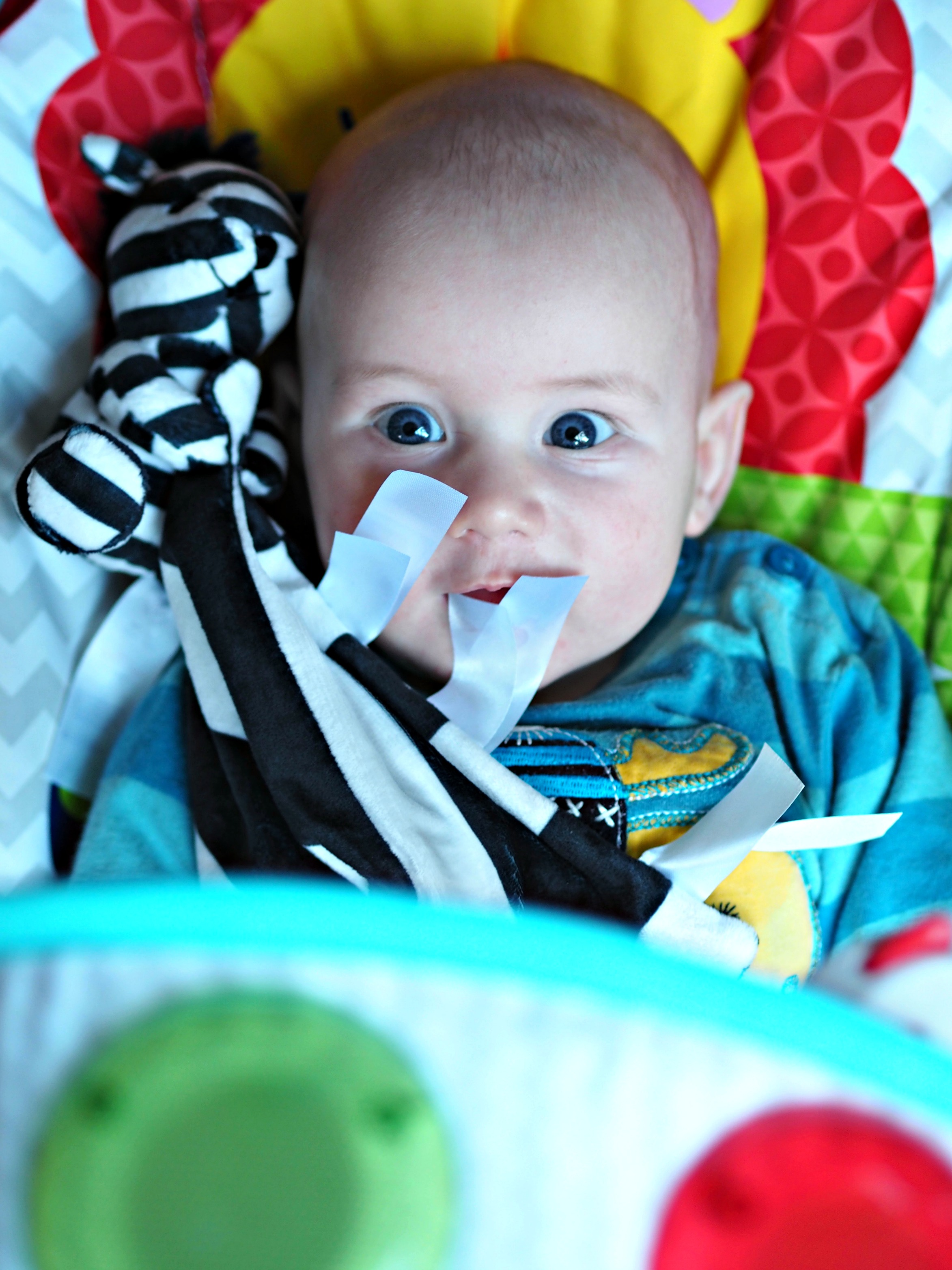 Ticklatots Tactile Soft Toys Review - Bo in bouncer