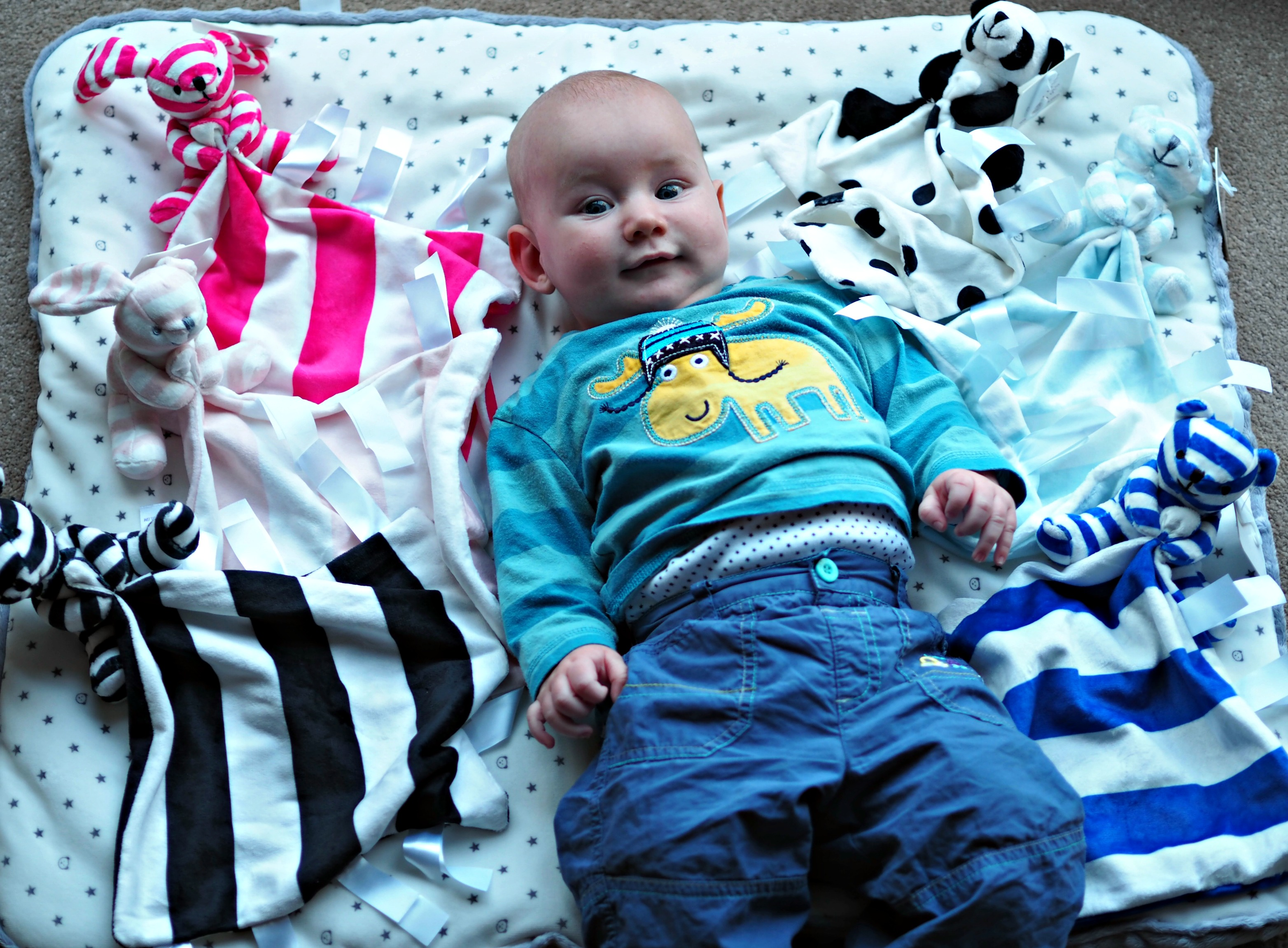 Ticklatots Tactile Soft Toys Review - Bo with all toys