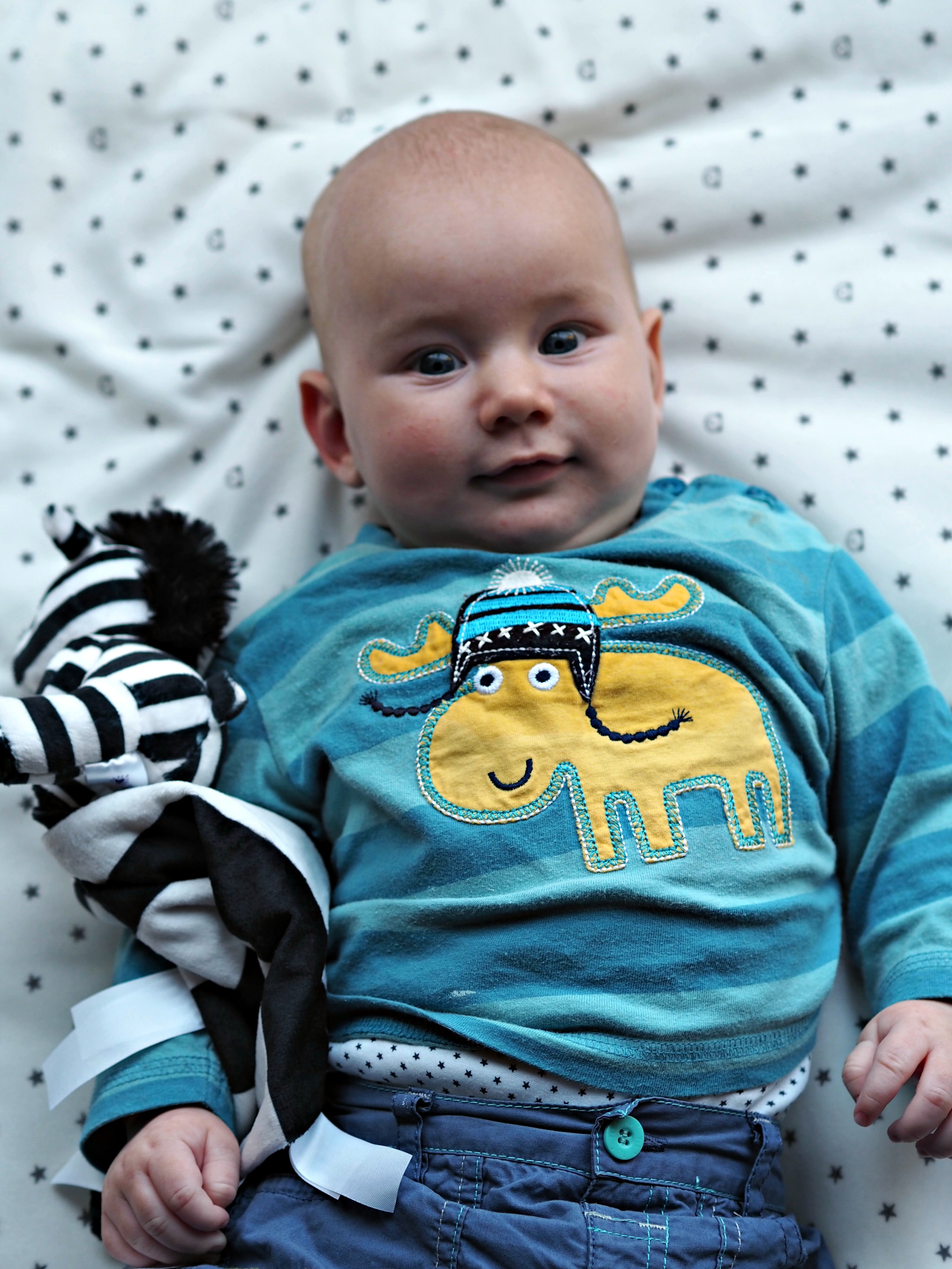 Ticklatots Tactile Soft Toys Review