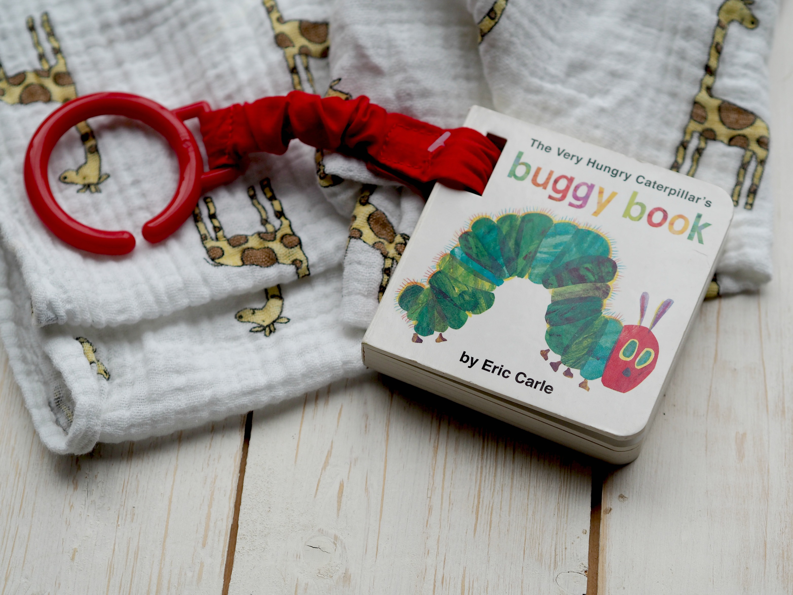 6 Books to Introduce a New Baby to Books - A Buggy Book