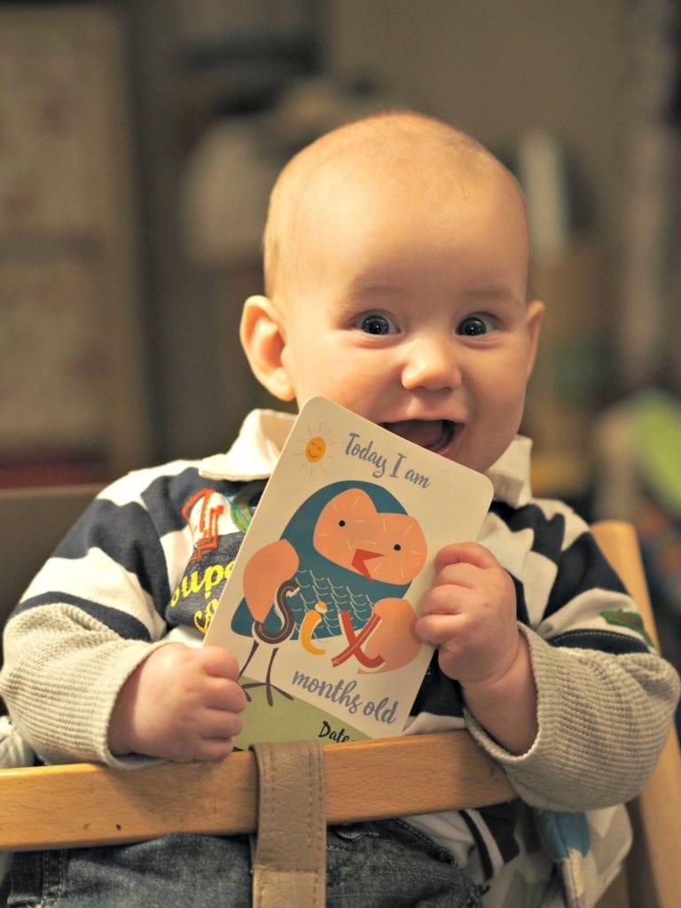 Bodhi at 6 Months - Bodhi