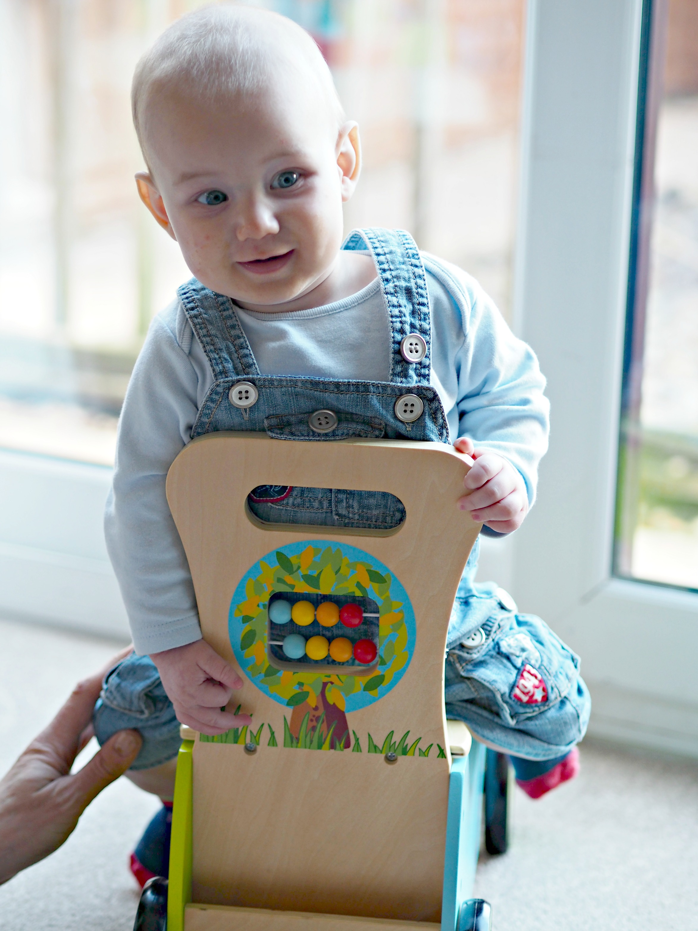Hippy Chick Classic World Rider and Walker Review