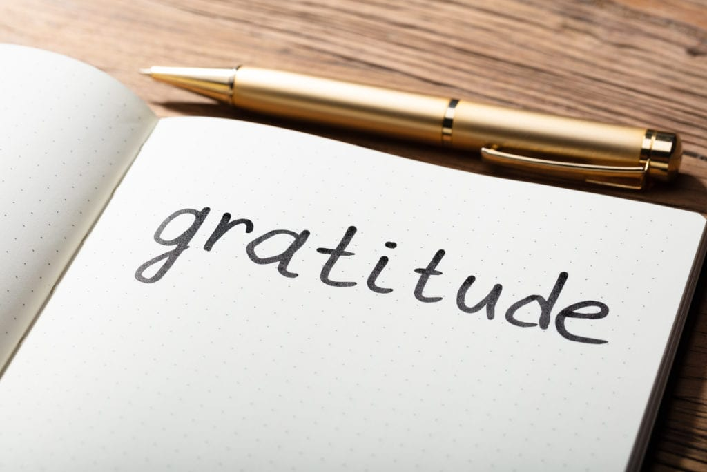 100 Things I'm Grateful for in January 2019