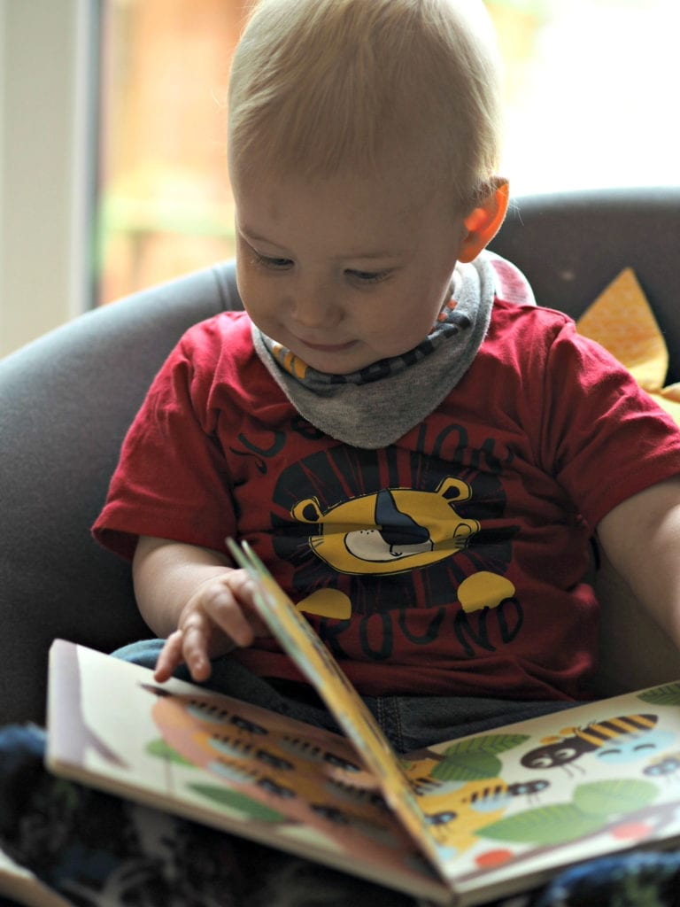 Beautiful Board Books for Babies - Bodhi reading Bee