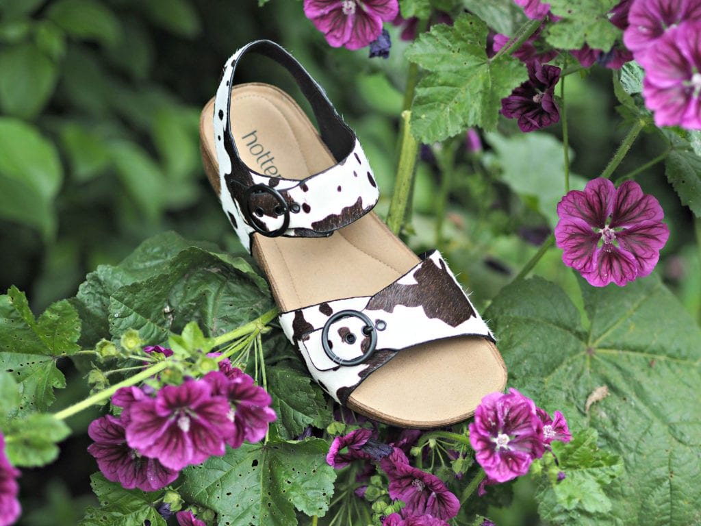 Hotter Tourist Cow print shoes in purple flower bed