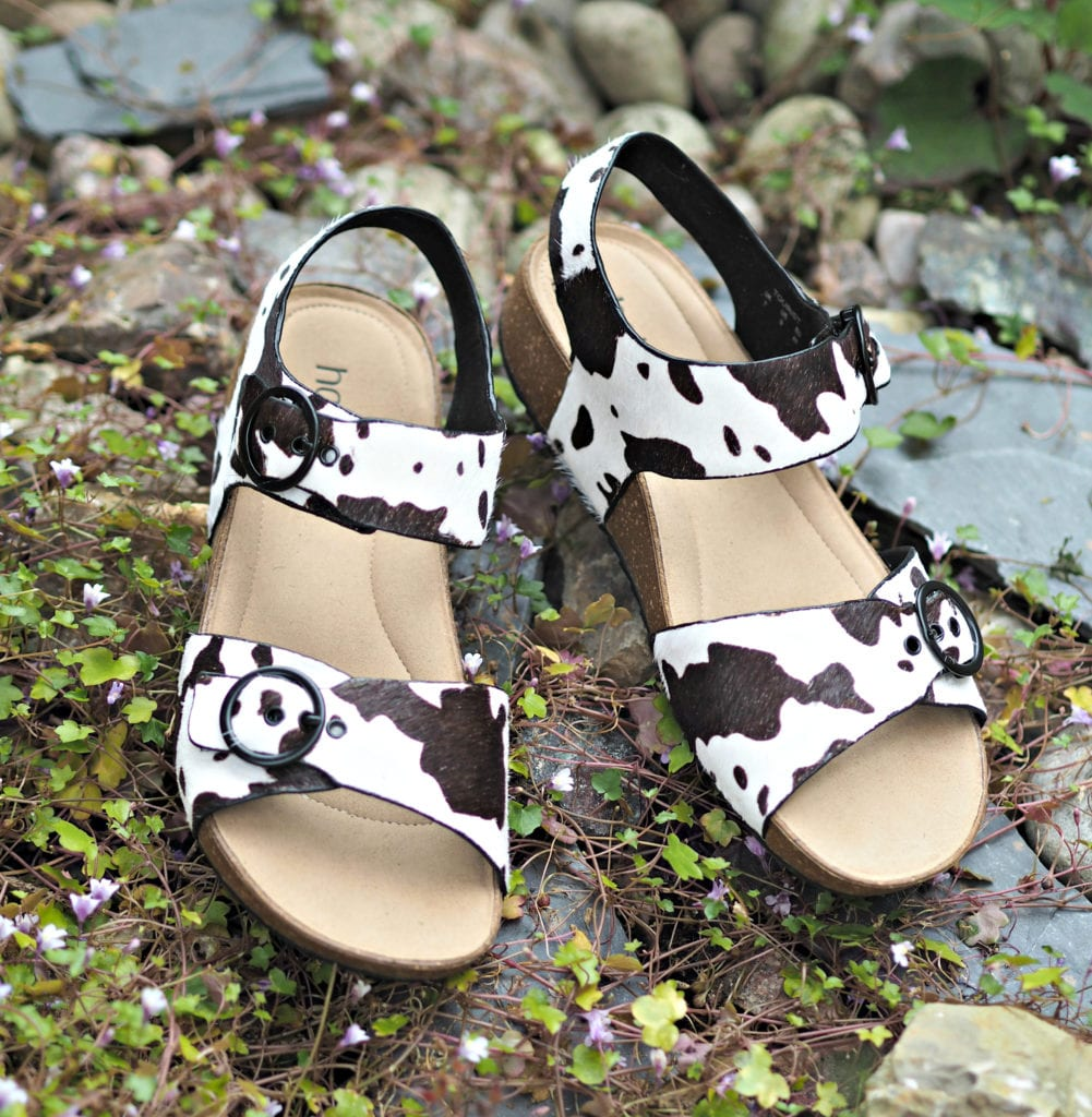 Hotter Tourist Cow print shoes on pebbles aerial view