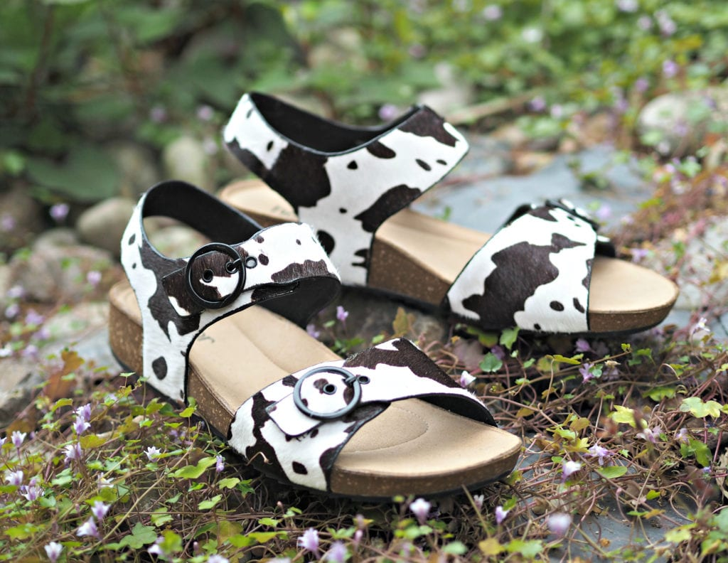 Hotter Tourist Cow print shoes on pebbles