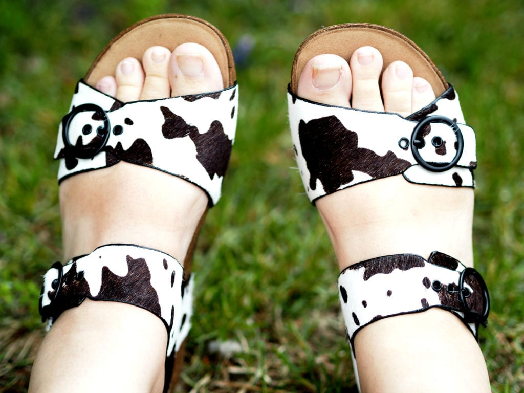 Hotter Tourist Cow print shoes review