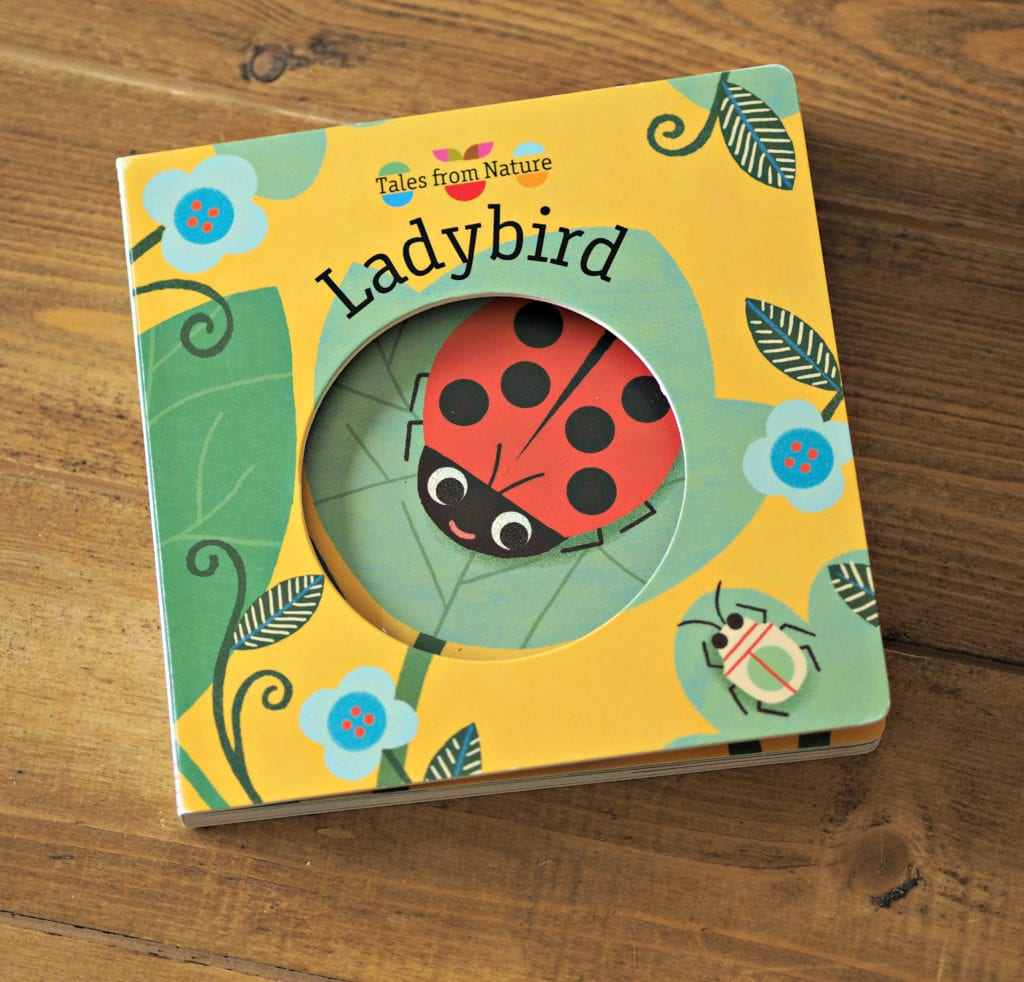 Tales from Nature Ladybird