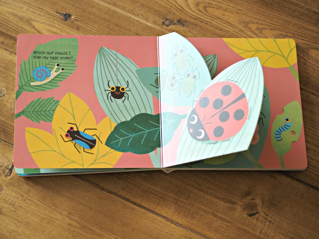 Tales from Nature Ladybird - inside pictures and cut outs