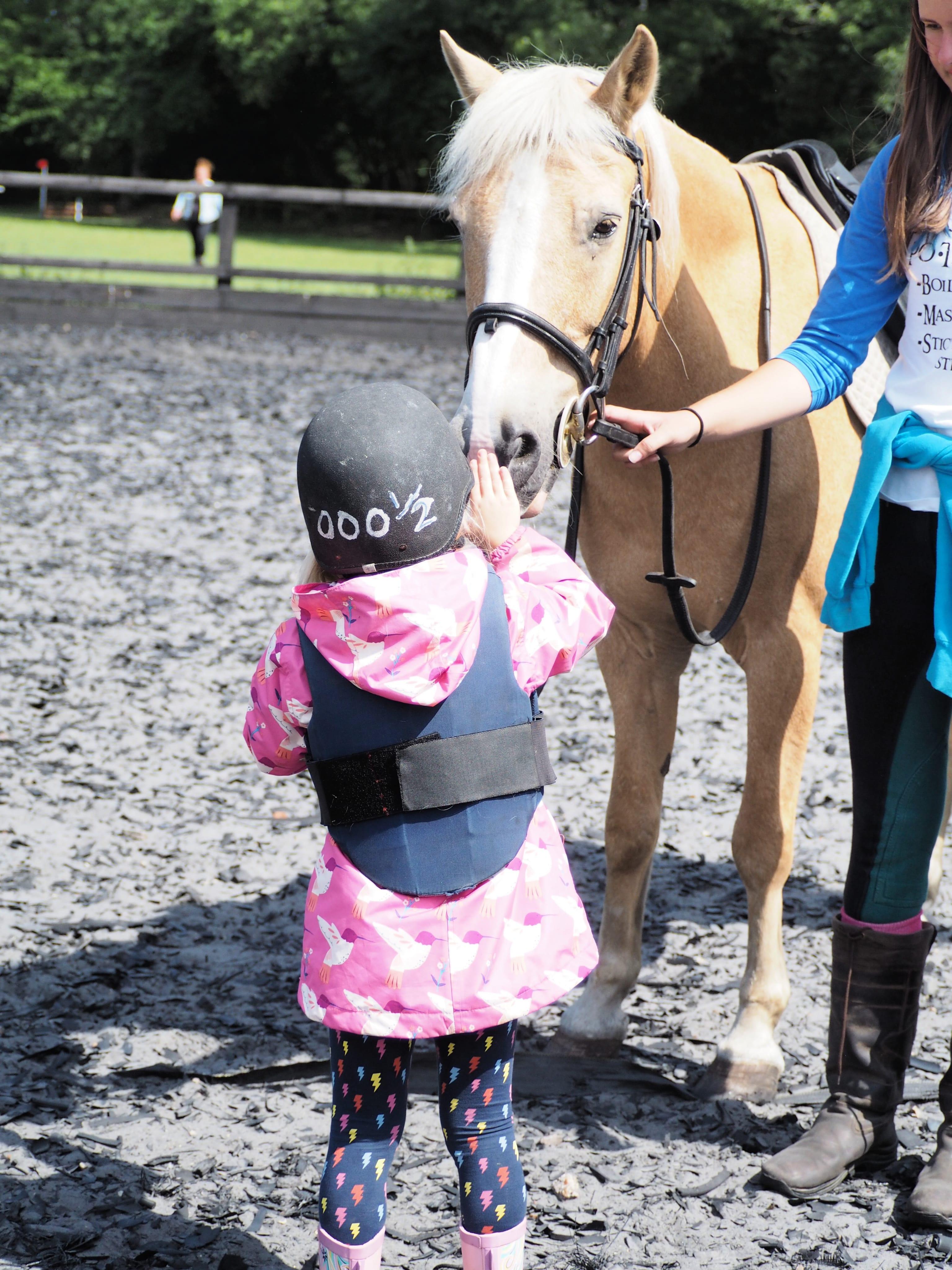 Aria stroking pony