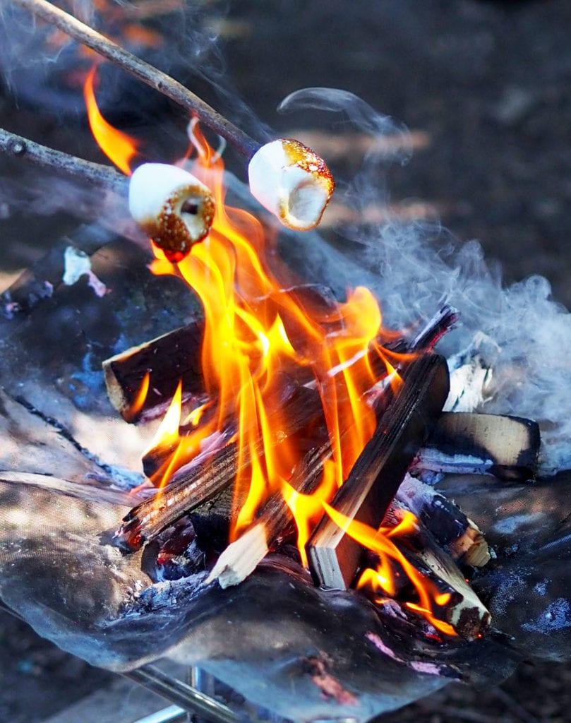 Roasting marshmallows over an open fire