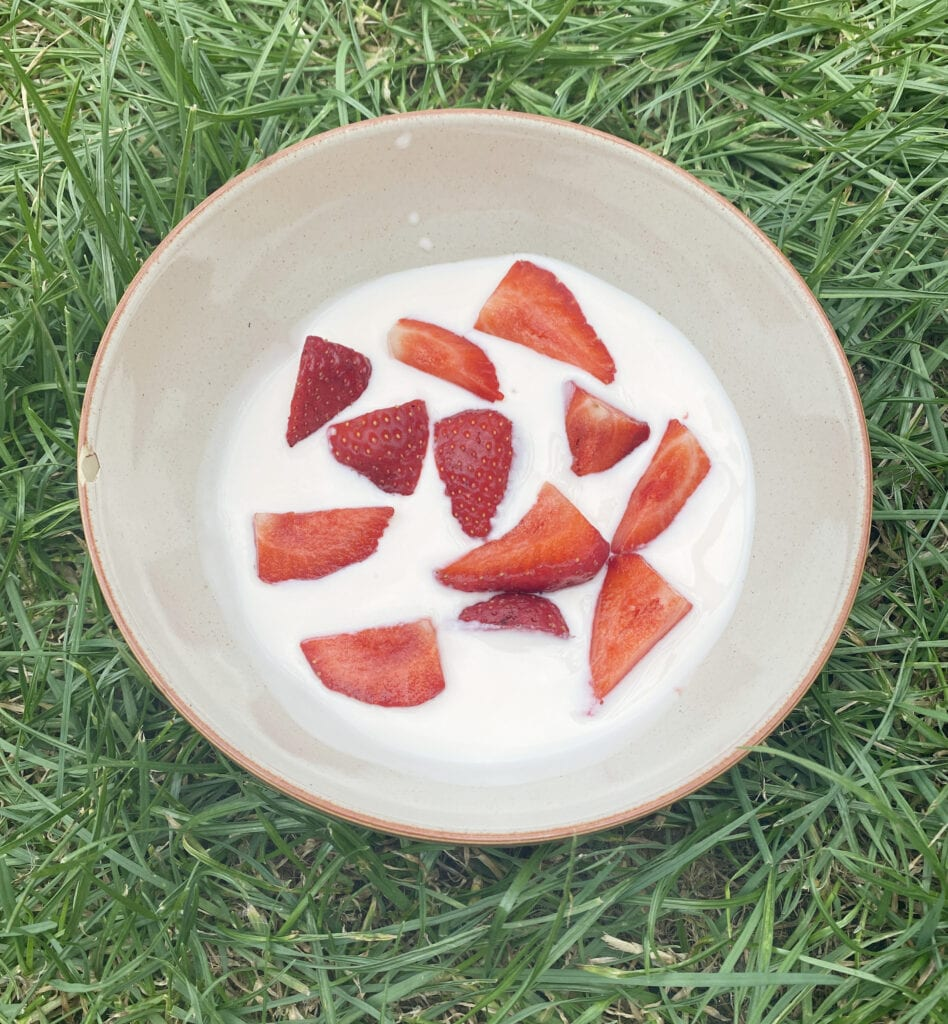Strawberry yoghurt made with Easy Yo Maker
