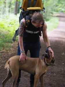 Is it Time to Retire my Ridgeback? As Florence gets older and has developed an auto-immune disease is it time to retire her from running to a quieter pace of life?